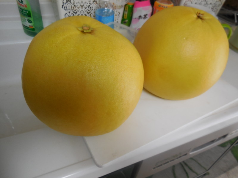 f:id:sasameyuki47:20160213143615j:image:w360
