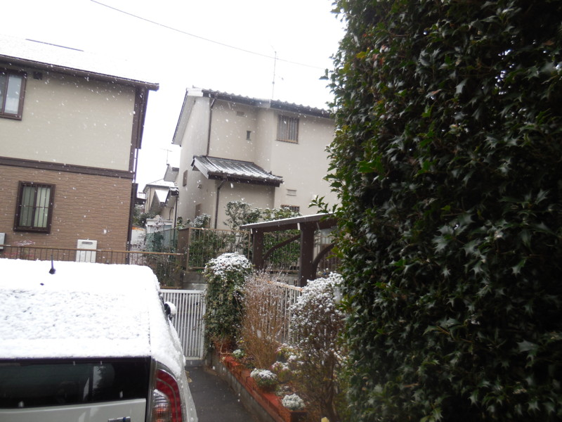 f:id:sasameyuki47:20160225075500j:image:w640