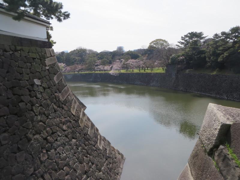 f:id:sasameyuki47:20160331134629j:image:w640