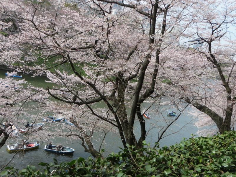 f:id:sasameyuki47:20160331140952j:image:w640