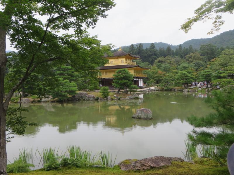 f:id:sasameyuki47:20160727112806j:image:w640