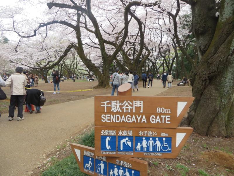 f:id:sasameyuki47:20170405153811j:image:w360