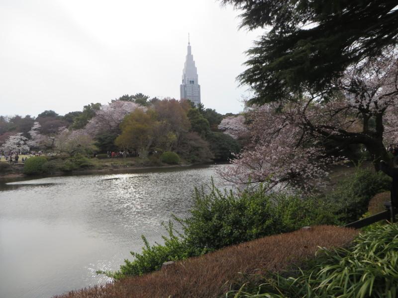 f:id:sasameyuki47:20170405155333j:image:w640