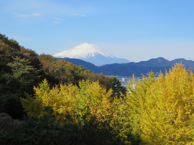 f:id:sasameyuki47:20171126095331j:image:w640