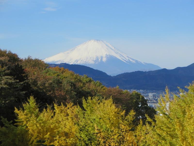 f:id:sasameyuki47:20171126095337j:image:w640