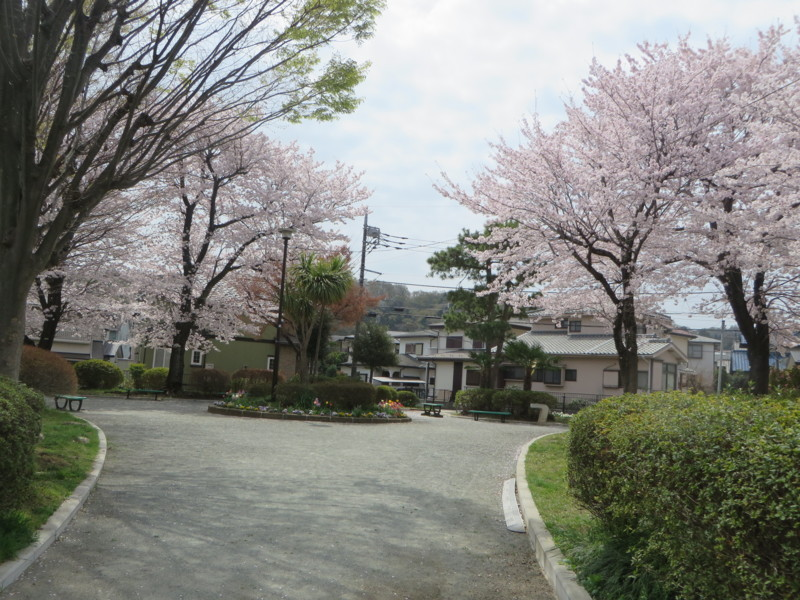 f:id:sasameyuki47:20180330104146j:image:w360