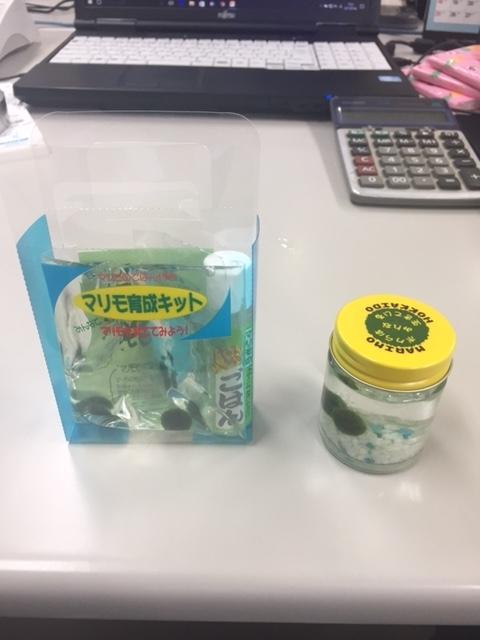 f:id:sasasasatsuki:20170704124857j:plain