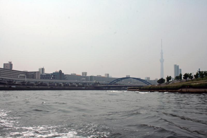 f:id:sashimi-fish1:20120601113354j:image:w360:right
