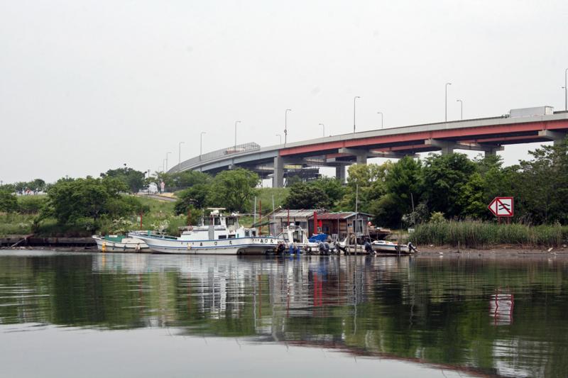 f:id:sashimi-fish1:20120601133451j:image:w360:right