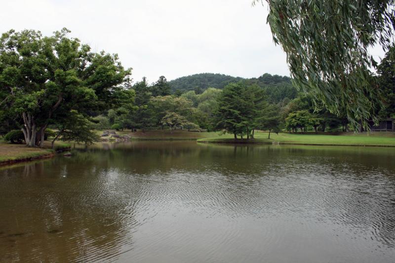 平泉町・観自在王院跡-12.08-