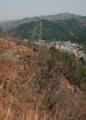 大槌町・城山展望台から焼け残った樹木-13.05-
