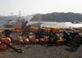 大槌町・赤浜・出漁準備-13.05-