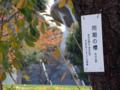 (新宿区)国立競技場マラソン門・出陣学徒の碑脇・同期の桜-13.11-