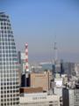 東京タワー・大展望台からスカイツリー