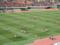 国立競技場(新宿区)全国大学ラグビー決勝帝京対早稲田-14.01-