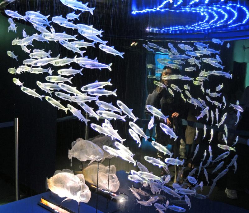 サンシャイン水族館(ペットボトルのオブジェ)-14.03-