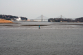 松川浦から大橋-1-14.04