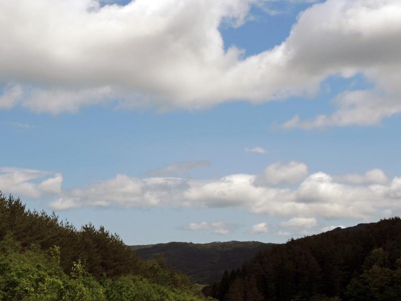 サンプリング浪江町(福島第一原発方面を望む)-1-14.05