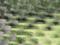 モザイク(世田谷美術館)-7-14.07