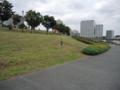 白髭西地区のスーパー堤防(荒川区)-1-14.11