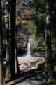 陣場の滝-2-14.11