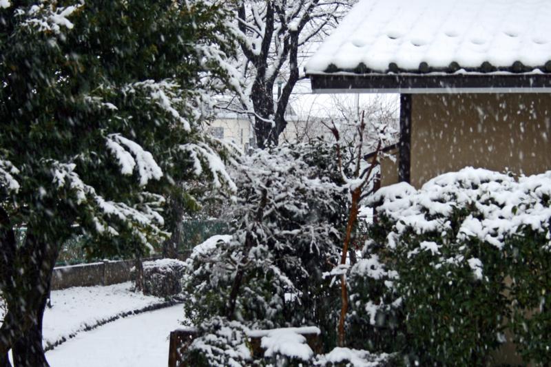 我が家の雪景色-1-15.01