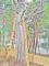 城山小学校平和祈念館(長崎)-4-15.03