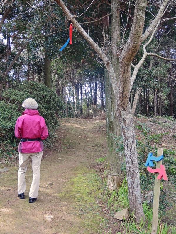 九州オルレ・平戸コース(長崎)-2-15.03