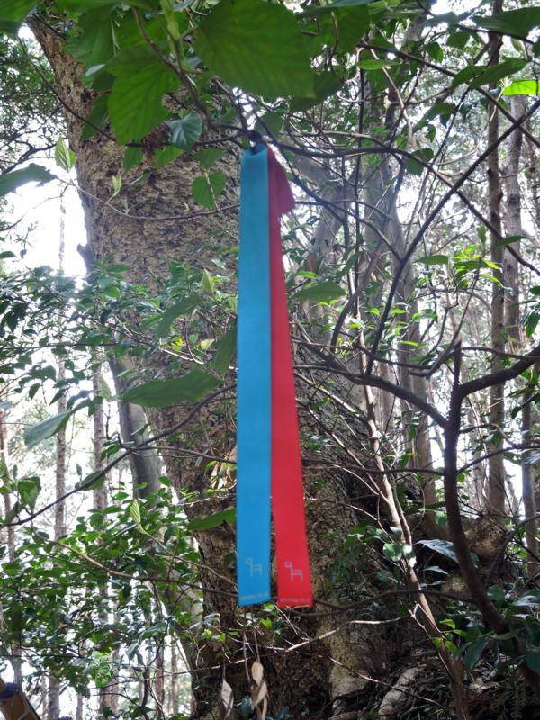 九州オルレ・平戸コース(長崎)-3-15.03