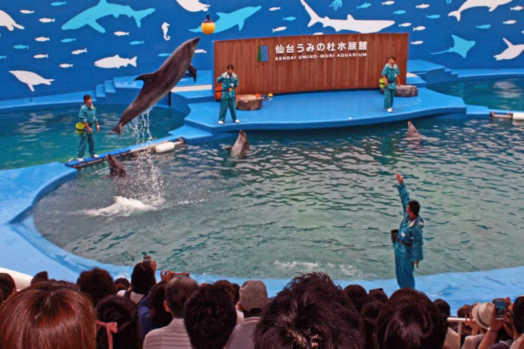 仙台うみの杜水族館-1-15.07