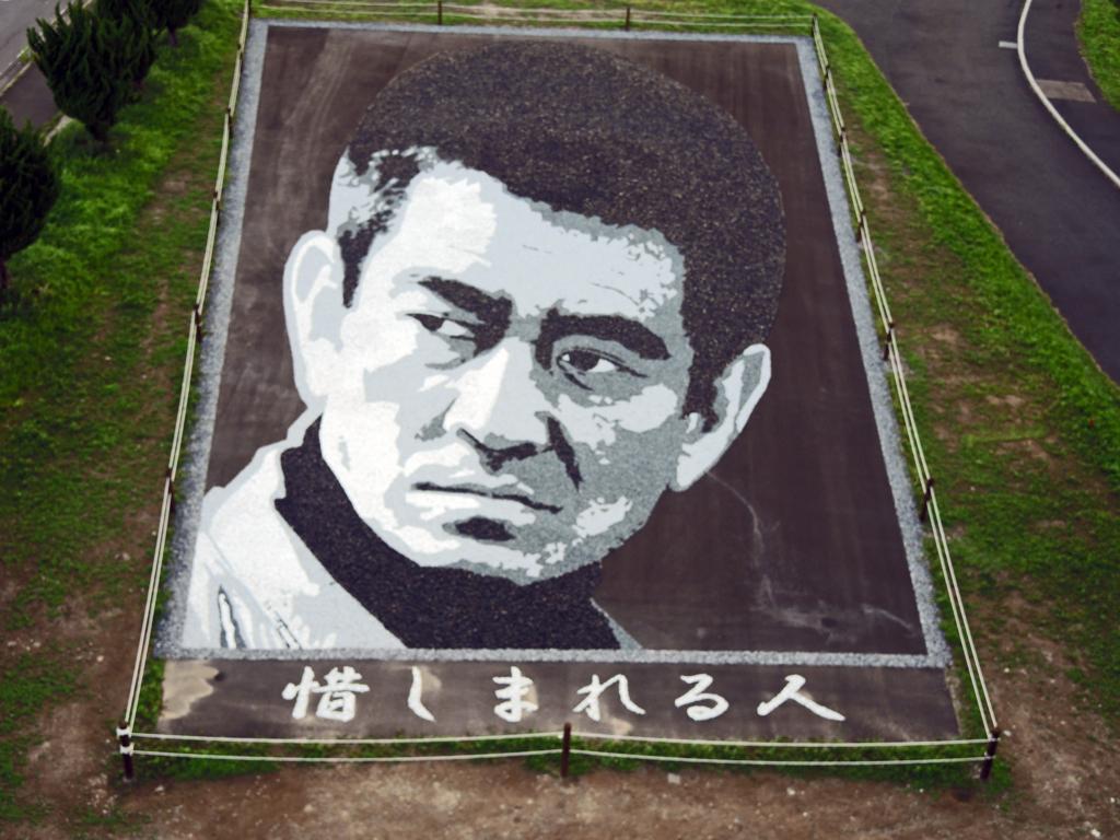 ストーンアート・惜しまれる人(田舎館村)-2-15.08