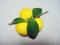 花柚子-1-15.12
