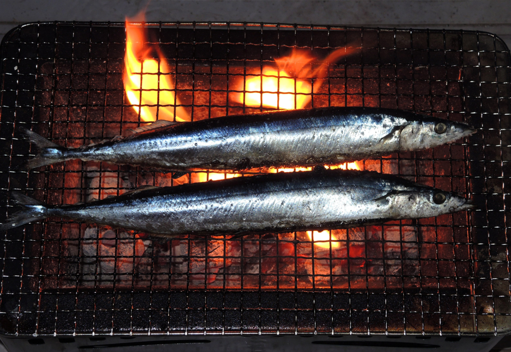 f:id:sashimi-fish1:20151213123716j:image:w170:left