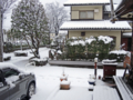 16年・雪(わが家)-2-16.01