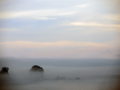 ホテル羅賀荘から海(田野畑村)-1-16.09