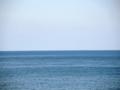 津軽海峡(風間浦村)-1-16.09