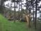 洞爺湖畔台風10号の被害(伊達市)-1-16.09