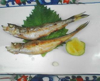 f:id:sashimi-fish1:20161205175749j:image:w220:right