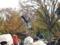 上野公園(台東区)-1-16.11