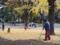 上野公園のイチョウ(台東区)-1-16.12