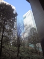 大手町の森(千代田区)-1-17.02