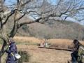 小網代の森(三浦市)-1-16.12