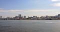 晴海埠頭から豊洲市場(中央区)-1-17.03