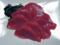 クロマグロ刺身(わが家)-1-17.05
