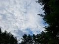 フォレストパークあだたら(福島県玉山村)-1-17.08
