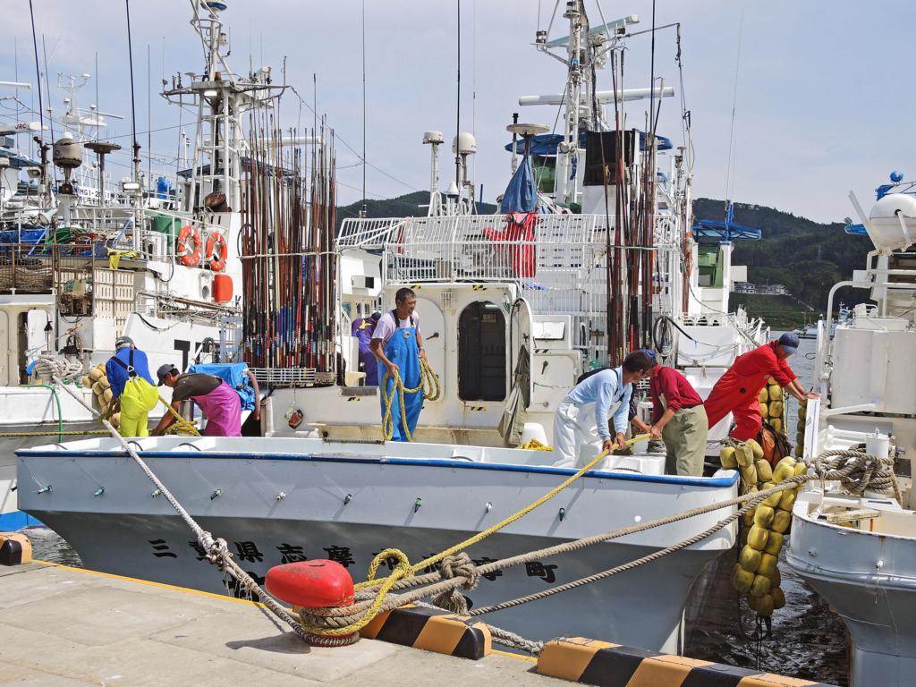f:id:sashimi-fish1:20171020074130j:image:w450:right