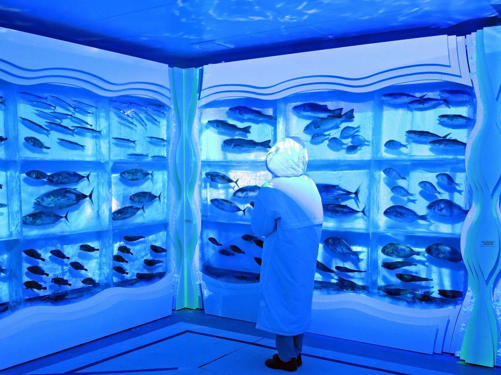 気仙沼港「海の市」氷の博物館-1-17.09