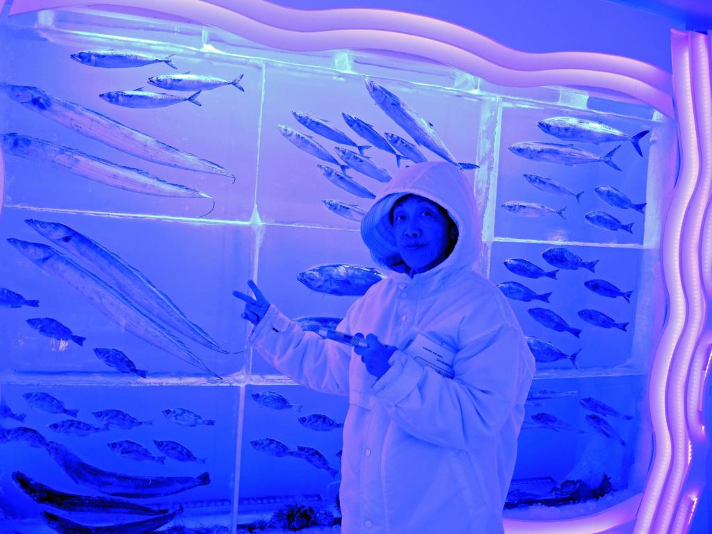 f:id:sashimi-fish1:20171020150644j:image:w275:left