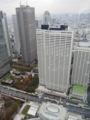 東京都庁、展望室から(新宿区)-1-17.11