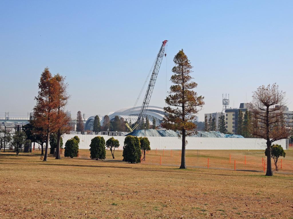 辰巳国際水泳場周辺(江東区)-4-17.12
